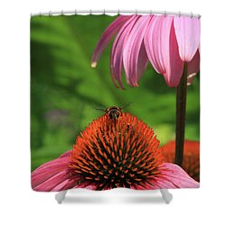 Atop A Cone Shower Curtain by Karol Livote