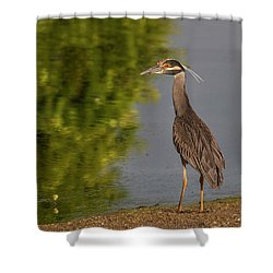 Attentive Heron Shower Curtain by Jean Noren