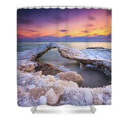 Atwater Ice Bridge Shower Curtain
