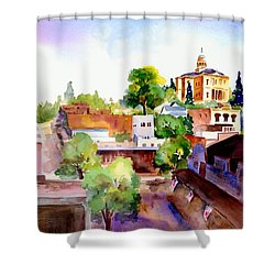 Auburn Old Town Shower Curtain