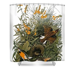 Audubon: Meadowlark Shower Curtain by Granger