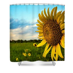 August Icon  Shower Curtain