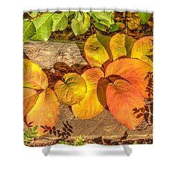 August Leaves Shower Curtain
