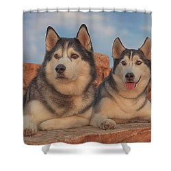 Shower Curtain featuring the photograph Aurora And Timber by Brian Cross