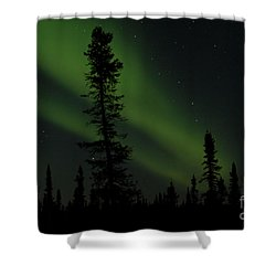 Aurora Borealis The Northern Lights Interior Alaska Shower Curtain
