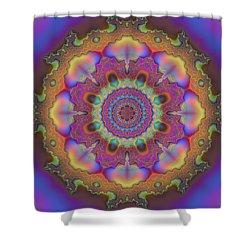 Aurora Graphic 026 Shower Curtain by Larry Capra