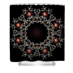 Aurora Graphics 025 Shower Curtain