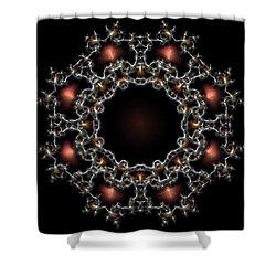 Aurora Graphics 025 Shower Curtain by Larry Capra