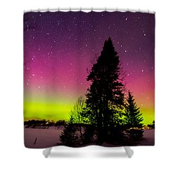 Aurora With Spruce Tree Shower Curtain by Tim Kirchoff