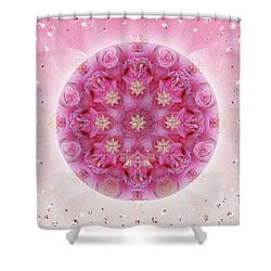 Auspicious Adoration Shower Curtain