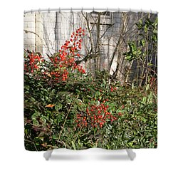 Shower Curtain featuring the photograph Austin Winter Berries by Linda Phelps