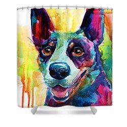Australian Cattle Dog Heeler Shower Curtain
