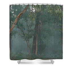Australian Morning Shower Curtain
