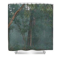 Australian Morning Shower Curtain