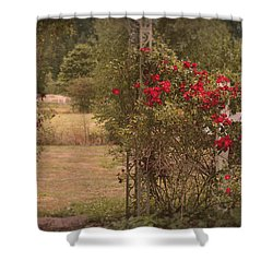 Roses 080515125 Shower Curtain