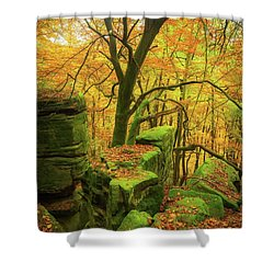 Automnal Glow Shower Curtain