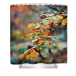 Shower Curtain featuring the photograph Autumn Aesthetics by Parker Cunningham