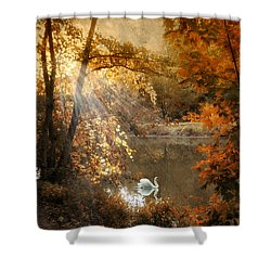 Shower Curtain featuring the photograph Autumn Afterglow by Jessica Jenney