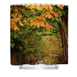 Shower Curtain featuring the photograph Autumn Along The Bog Burn by RKAB Works
