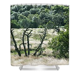 Autumn And Grass In Isle Of Skye, Uk Shower Curtain