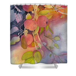 Autumn Apples Full Painting Shower Curtain