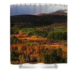Autumn Aspen At Conway Summit In The Eastern Sierras Shower Curtain