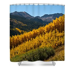 Shower Curtain featuring the photograph Autumn Aspen Near Castle Creek by Cascade Colors