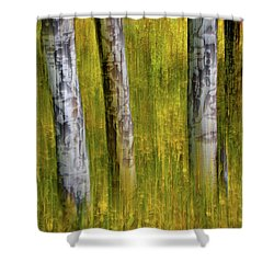 Shower Curtain featuring the photograph Autumn Aspen Recollections by John De Bord