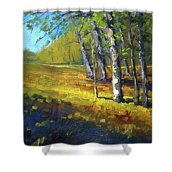 Autumn At Bloedel Shower Curtain