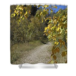 Autumn At Iron Creek Shower Curtain