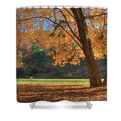 Shower Curtain featuring the photograph Autumn At Lykens Glen by Lori Deiter