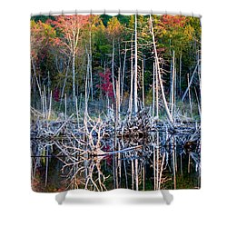 Autumn At Moosehead Bog Shower Curtain by Brent L Ander