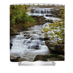 Shower Curtain featuring the photograph Autumn At The Falls by Dale Kincaid