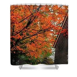 Autumn At The Window Shower Curtain