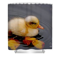 Autumn Baby Shower Curtain by Jacky Gerritsen
