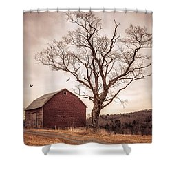 Shower Curtain featuring the photograph Autumn Barn And Tree by Gary Heller