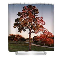Shower Curtain featuring the photograph Autumn Beauty by Milena Ilieva