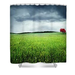 Shower Curtain featuring the photograph Autumn by Bess Hamiti