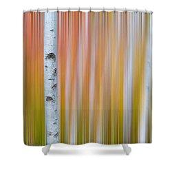 Autumn Birch Abstract Shower Curtain