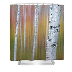 Autumn Birch Impressions Shower Curtain