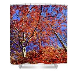 Shower Curtain featuring the photograph Autumn Blaze by Karen Wiles