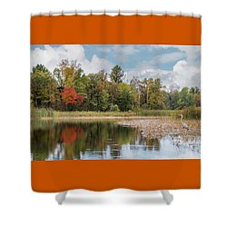 Autumn Blue Heron Shower Curtain