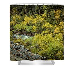 Autumn Bouquet Shower Curtain