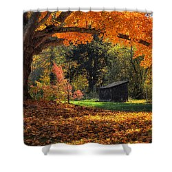 Autumn Brilliance Shower Curtain by Tricia Marchlik