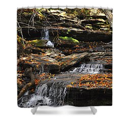 Shower Curtain featuring the photograph Autumn Brook by Diane E Berry