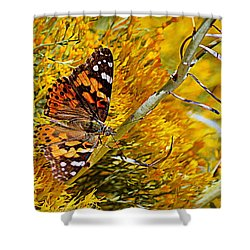 Shower Curtain featuring the photograph Autumn Butterfly by AJ Schibig