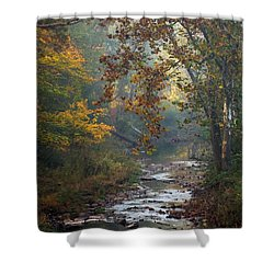 Shower Curtain featuring the photograph Autumn By The Creek by Elsa Marie Santoro