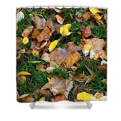Autumn Carpet 002 Shower Curtain