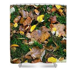 Autumn Carpet 002 Shower Curtain by Dorin Adrian Berbier