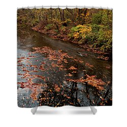 Autumn Carpet 003 Shower Curtain by Dorin Adrian Berbier